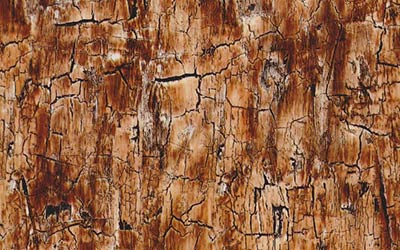 757-Rustic-Cracked-Wood-Hardwood-Camo-Woodgrain-Wood-Hydrographics-Film-Pattern-Buy-WHITE