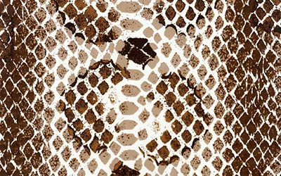<strong>WTP-235:</strong> Snakeskin Illusion All Season Brown